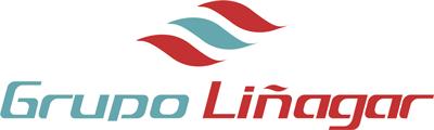 Resultado de imagen de grupo liñagar logo